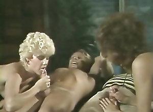 Blowjobs;Cumshots;Group Sex;Vintage Gator 468
