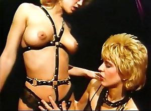 Blowjobs;Cumshots;Pornstars;Group Sex;Vintage Gator 465
