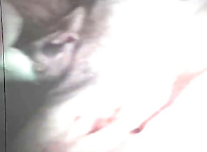 315::Vintage,7706::HD,15464::Petite,50 Silent Horror...